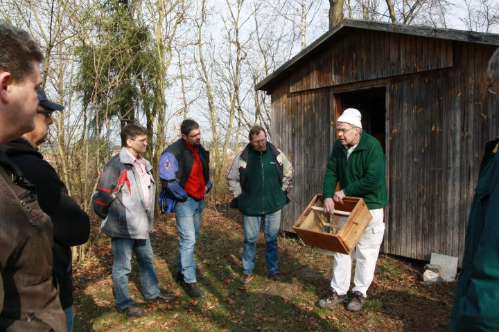 Probeimkern 2012 - Bienenstande Erklärung